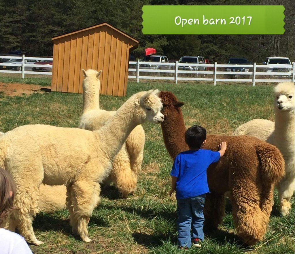 Open Barn 2017